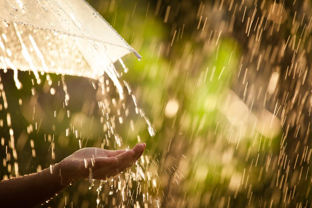 雨が好きな人の心理や性格について・雨がもたらすヒーリング効果とは?